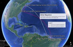 MigrationMap1