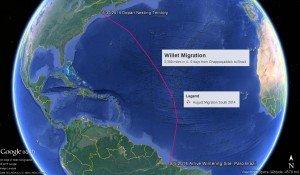 MigrationMap2