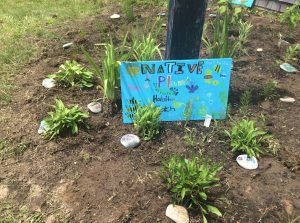 edgartown-native-plant-sign