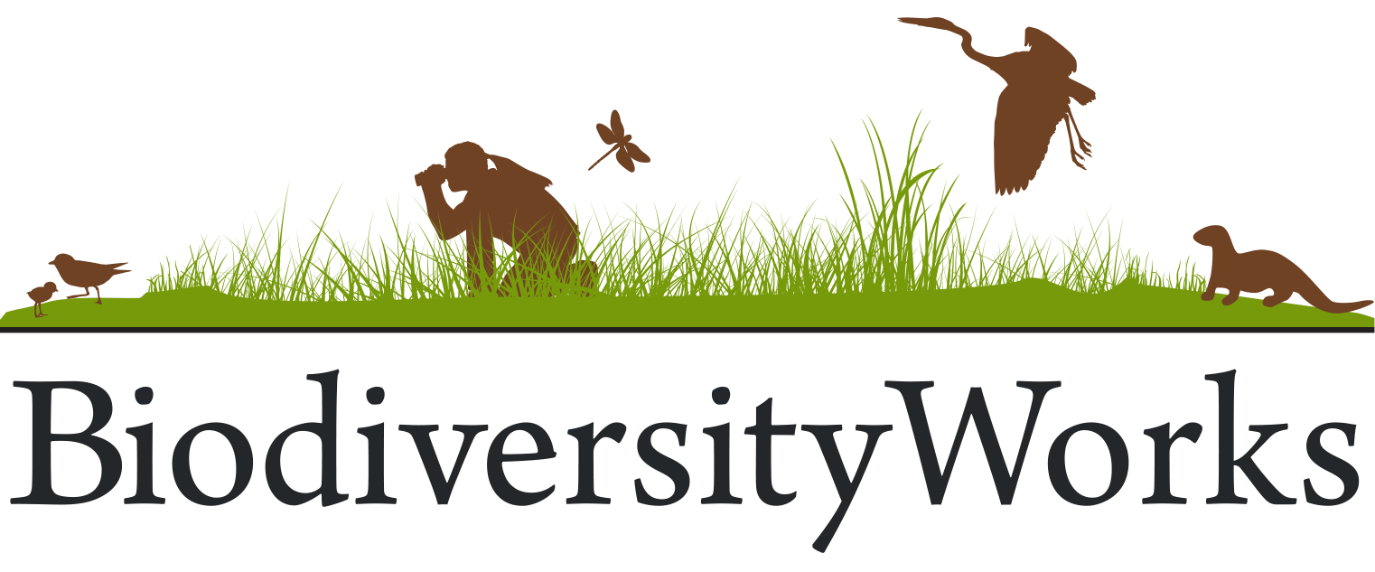 wildlife research, monitoring, and mentoring